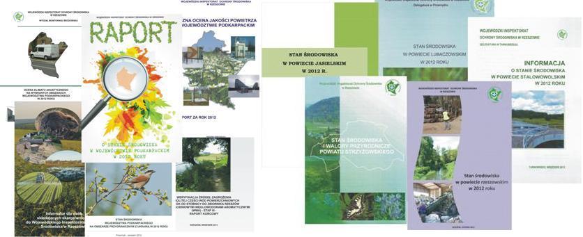 publikacje_2013